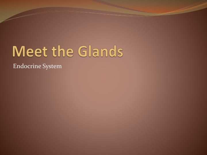Meet the Glands