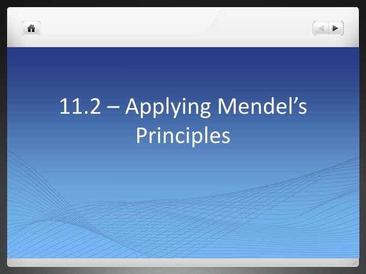 11.2 – Applying Mendel's Principles