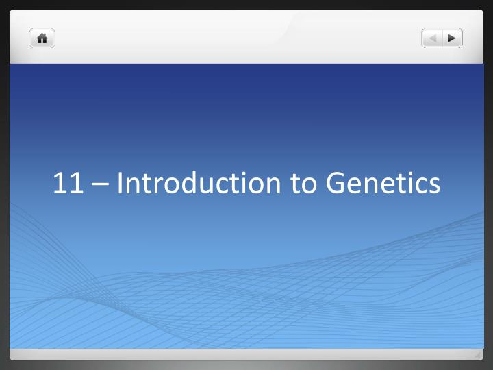 11 introduction to genetics