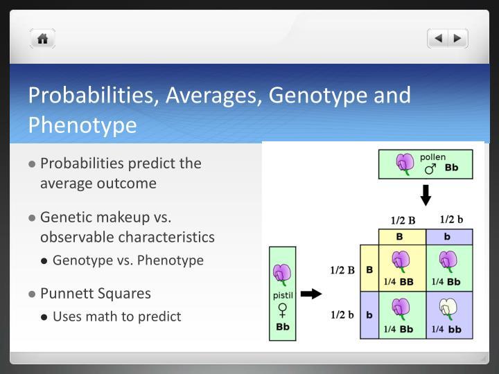 Probabilities, Averages, Genotype and Phenotype