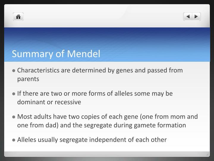 Summary of Mendel