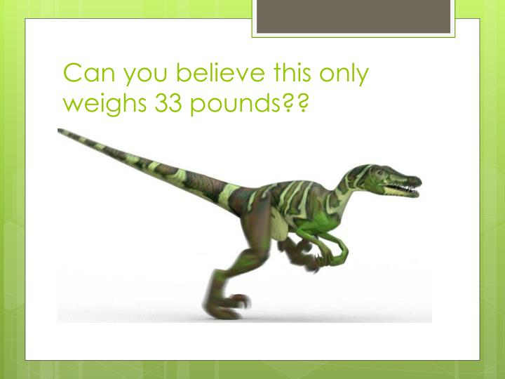 Can you believe this only weighs 33 pounds??