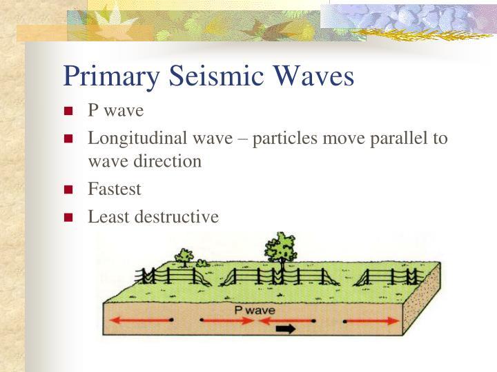 Primary Seismic Waves