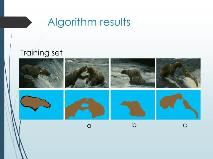 Algorithm results