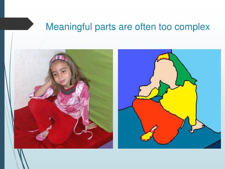 Meaningful parts are often too complex