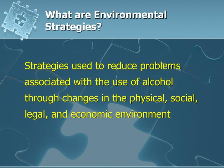 What are Environmental Strategies?