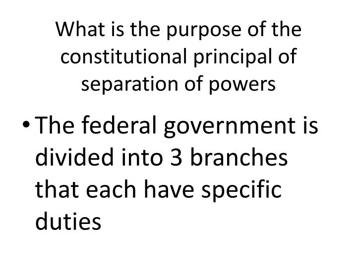 What is the purpose of the constitutional principal of separation of powers