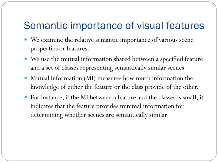 Semantic importance of visual features