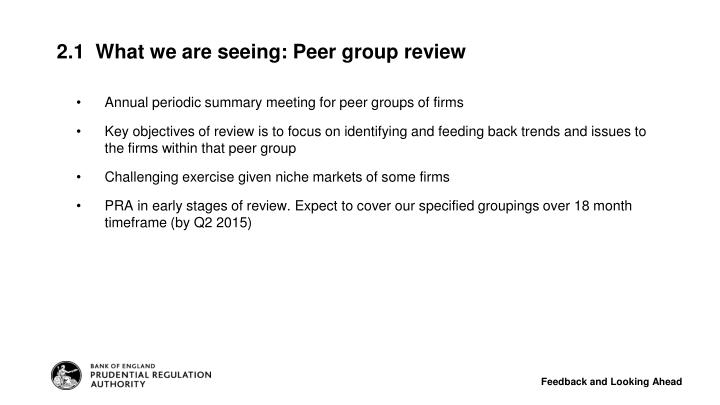 Annual periodic summary meeting for peer groups of firms
