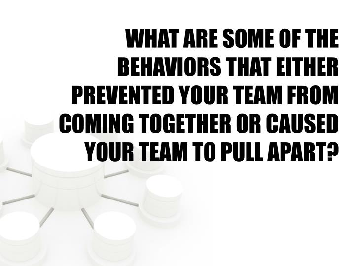 WHAT ARE SOME OF THE BEHAVIORS THAT EITHER PREVENTED YOUR TEAM FROM COMING TOGETHER OR CAUSED YOUR TEAM TO PULL APART?
