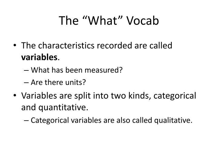 "The ""What"" Vocab"