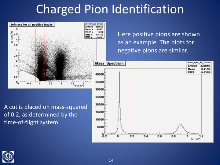 Charged Pion Identification