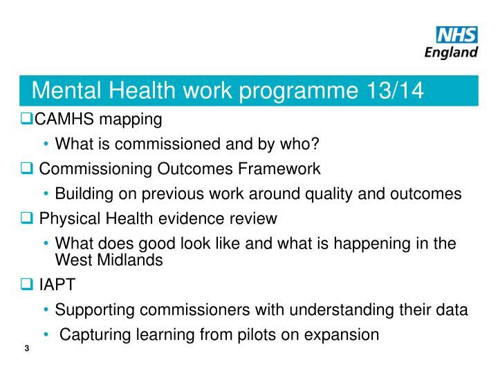Mental Health work programme 13/14