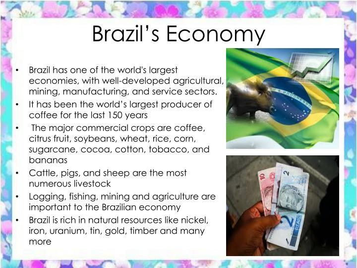 Brazil's