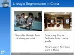 lifestyle segmentation in china1