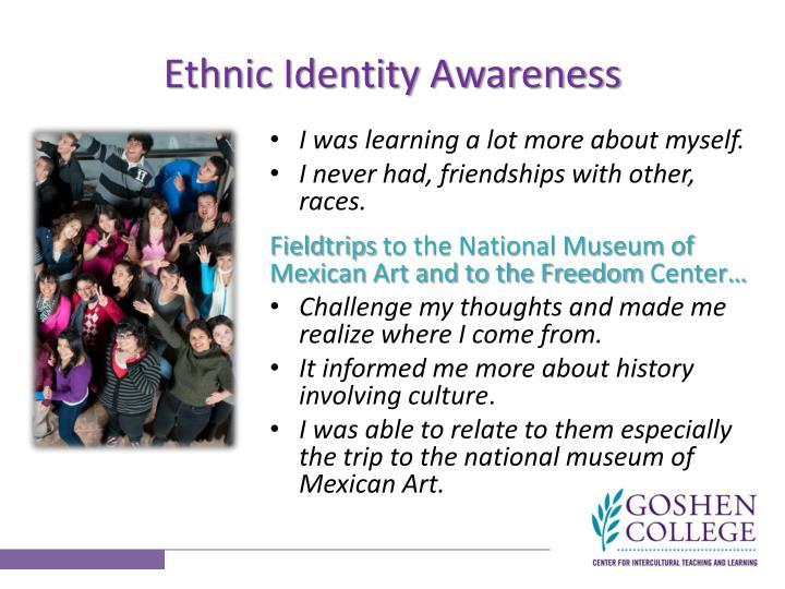 Ethnic Identity Awareness