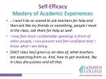 self efficacy mastery of academic experiences