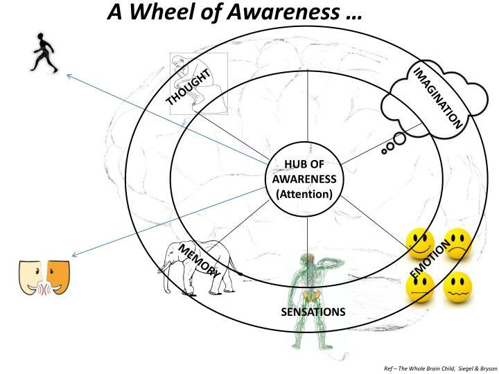 A Wheel of Awareness …