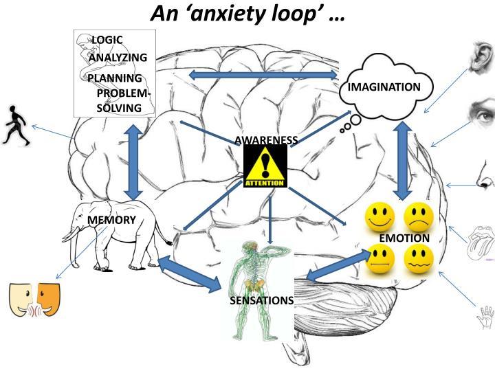 An 'anxiety loop' …