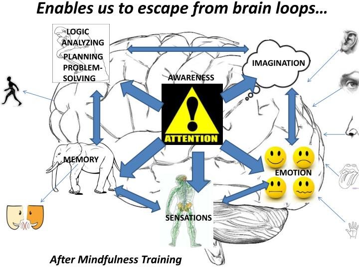 Enables us to escape from brain loops…