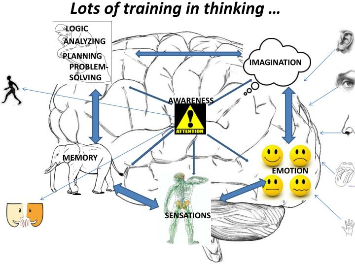 Lots of training in thinking …
