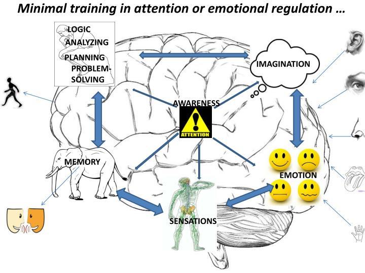 Minimal training in attention or emotional regulation …