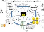 minimal training in attention or emotional regulation