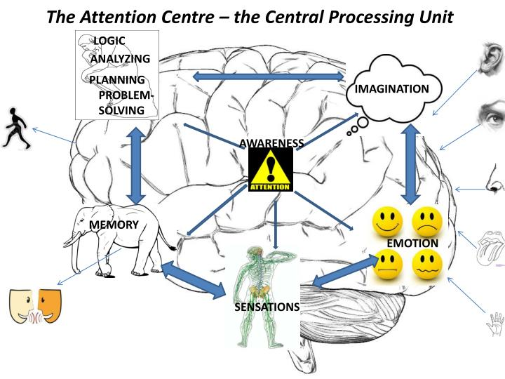 The Attention Centre – the Central Processing Unit