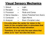 visual sensory mechanics