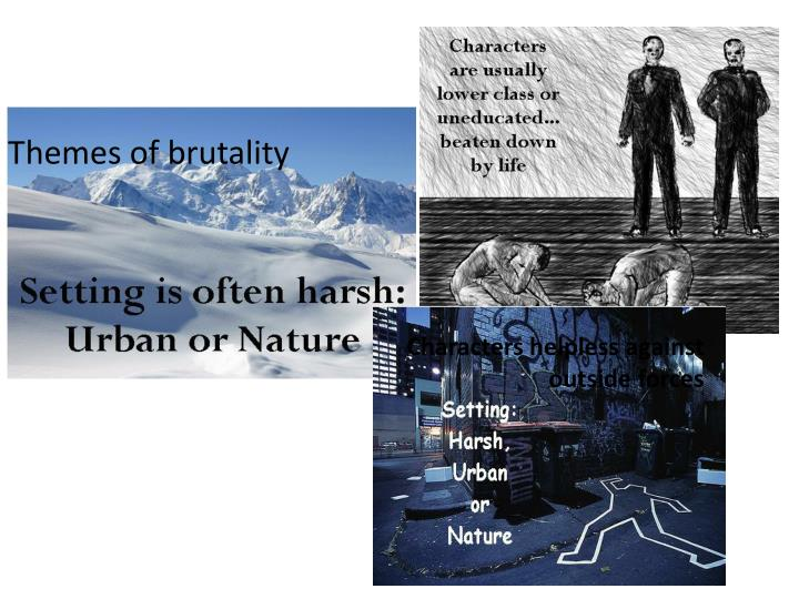 2. What was the main focus of the Naturalistic writer?