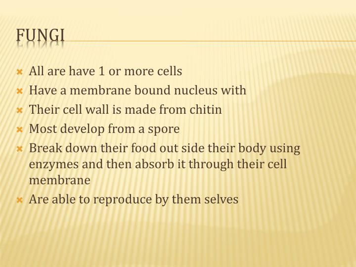All are have 1 or more cells