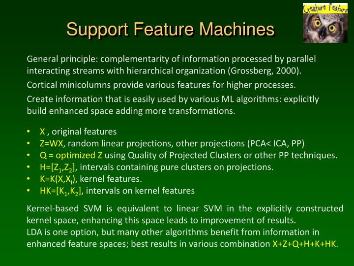 Support Feature Machines