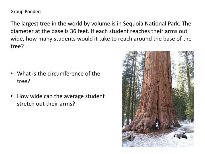 Group Ponder: