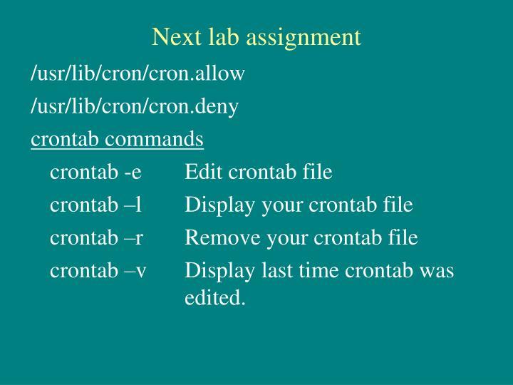 Next lab assignment