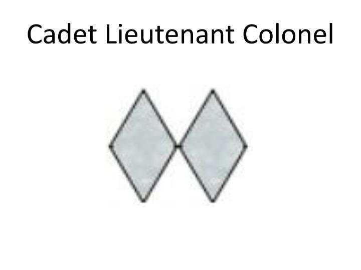 Cadet Lieutenant Colonel