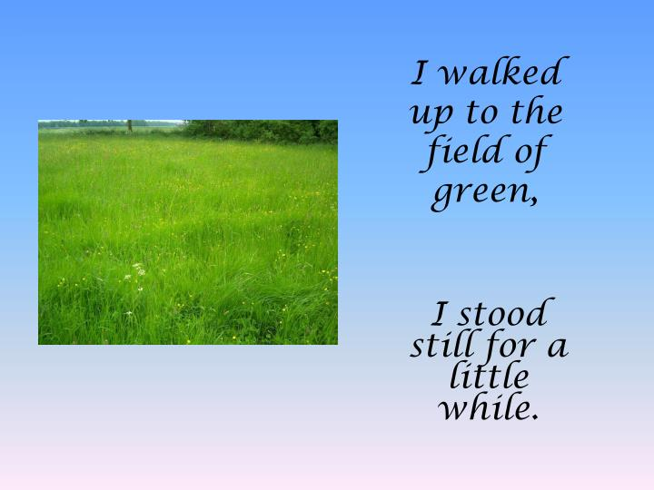 I walked up to the field of green,