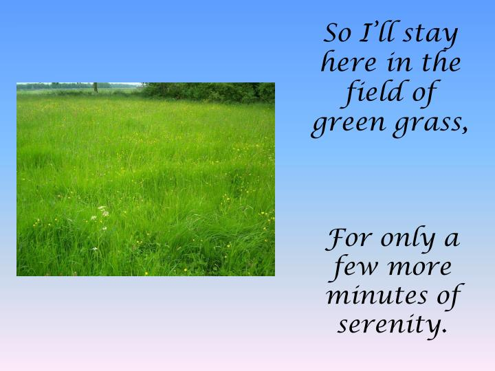 So I'll stay here in the field of green grass,