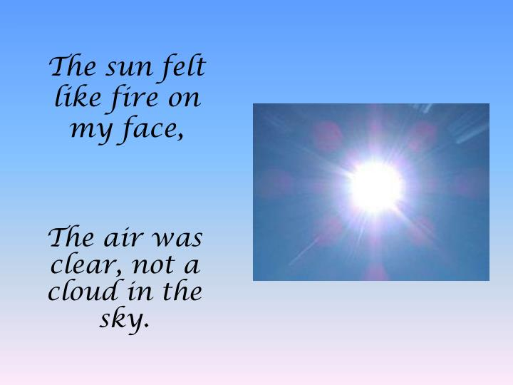 The sun felt like fire on my face,