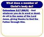 what does a member of christ s body do