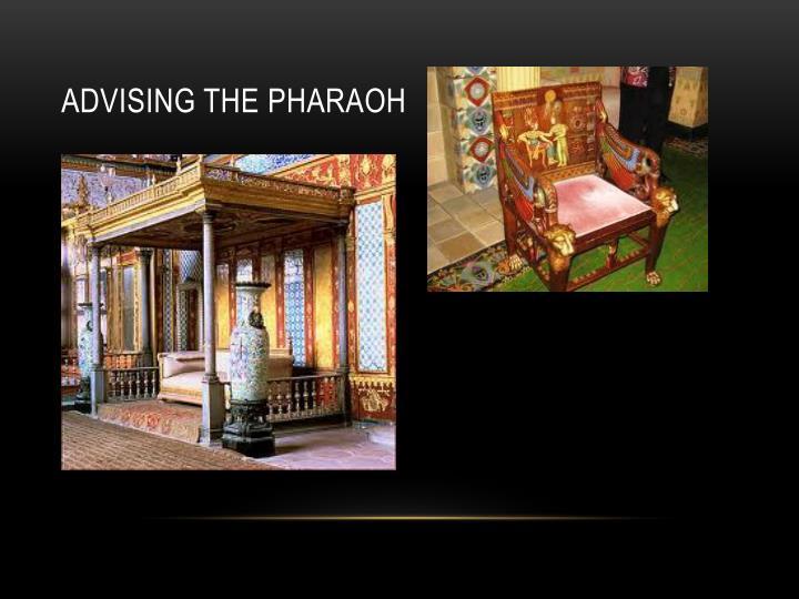 Advising the pharaoh