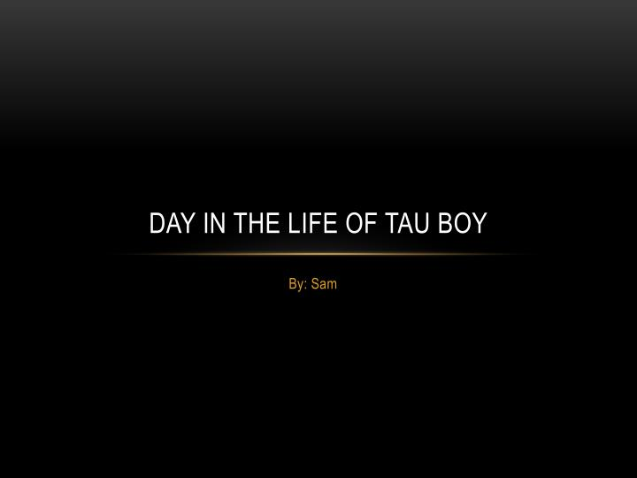Day in the life of tau boy