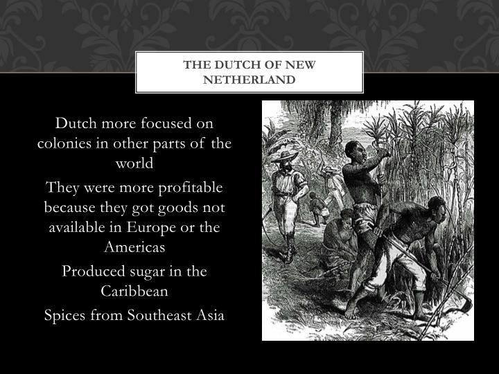 The Dutch of New Netherland