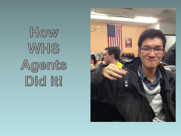 How WHS Agents Did it!