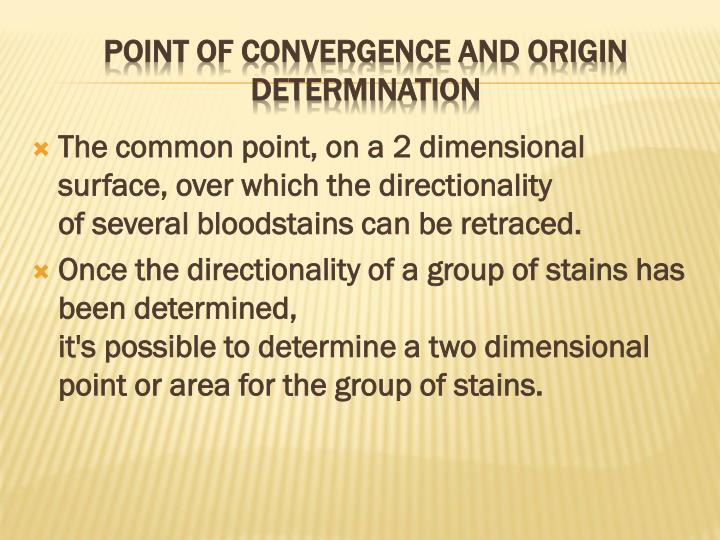 The common point, on a 2 dimensional surface, over which the directionality