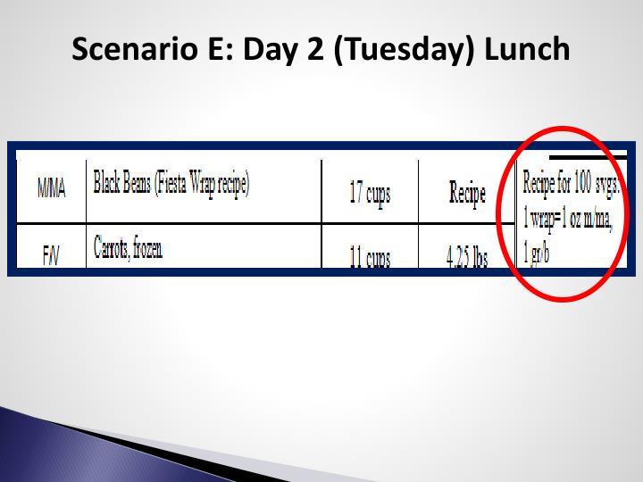 Scenario E: Day 2 (Tuesday) Lunch