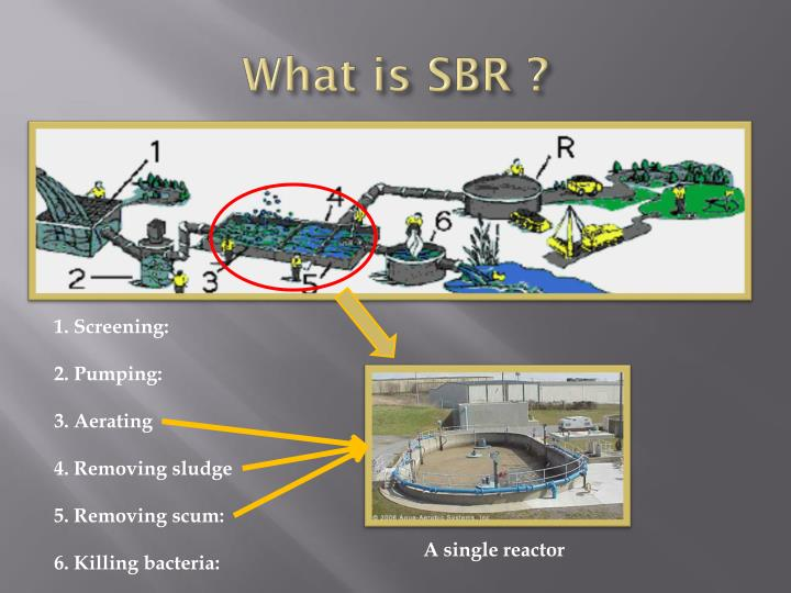 What is SBR ?
