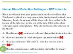 human blood collection bellringer not to turn in