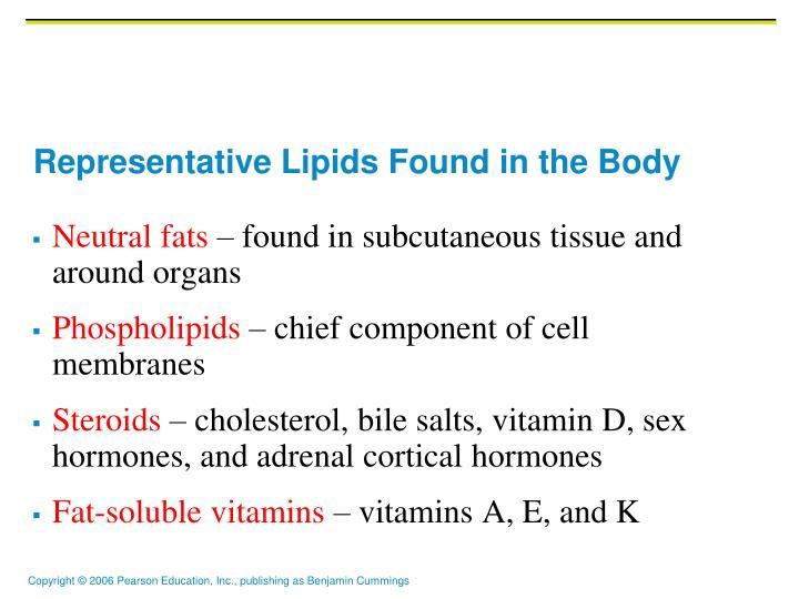 Representative Lipids Found in the Body