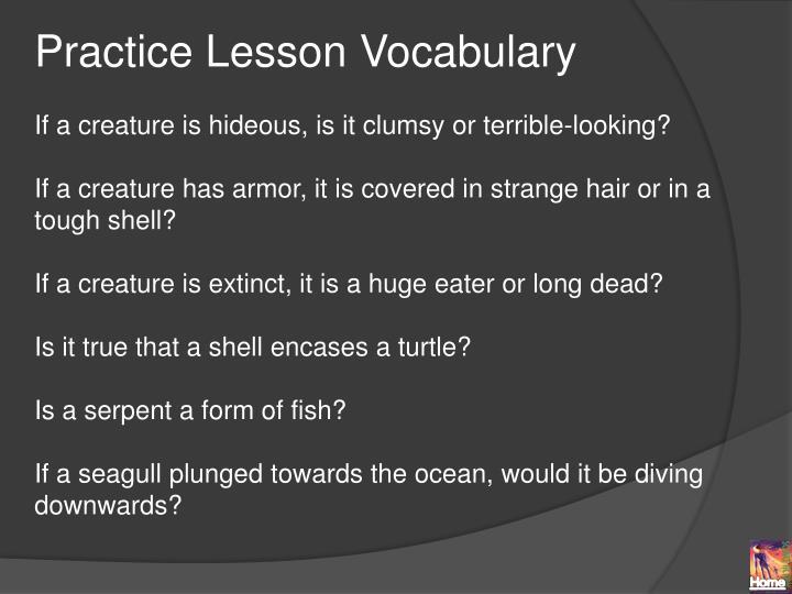 Practice Lesson Vocabulary