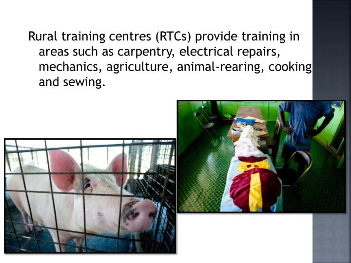 Rural training centres (RTCs) provide training in areas such as carpentry, electrical repairs, mechanics, agriculture, animal-rearing, cooking and sewing.